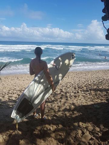 Typisches Shortboard, Encuentro, Dominikanische Republik