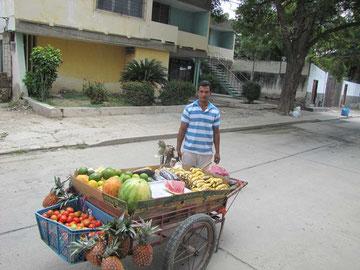 Ein Fruchtverkäufer zieht mit seinem Handkarren, kleinem Sortiment, kleinen Preisen aber großer Lautstärke durch die Straßen Rodaderos. Anhalten und zugreifen !