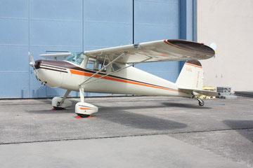 Cessna 140 - NC2154N (Foto: Stefan Schmoll)
