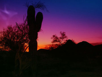 Sunrise over Arizona desert. Photo was taken by  Fotonaut.