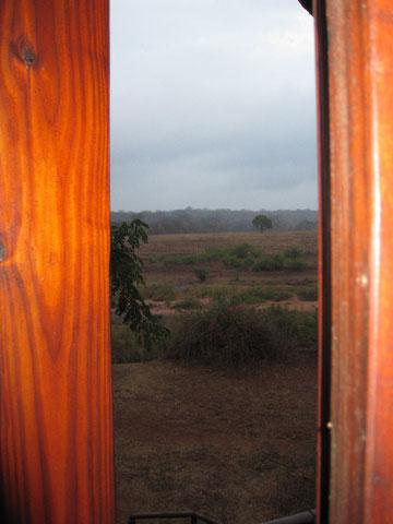 ...uscendo dalla toilette, mattino di pioggia