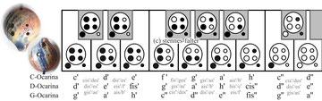 Grifftabelle für die 6-Loch-Ocarina englisches System nach Gosselink - kleines Deumenloch rechts