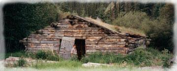 Dalton Trail - eine uralte Handelsroute mitten im Yukon