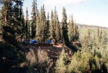 Camp am Dalton Trail