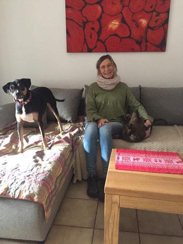 Toffy (Tofu, rechts) wohnt nun bei Monti in Gescher.