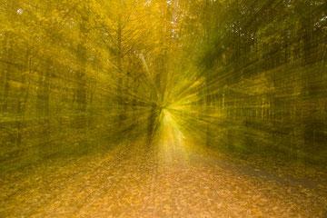 Herbstimpression aus dem Steiger, Erfurt, mittlerer Zoomeffekt