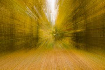 Herbstimpression aus dem Steiger, Erfurt - schneller Zoomeffekt