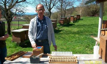 Die Apitherapie ist die Anwendung von Bienenprodukten wie Honig, Bienengift, Propolis, Pollen, Gelée Royale und Bienenwachs zur Vorbeugung und Heilung von Krankheiten oder Störungen...