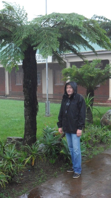 Günther im Regen unter Riesenfarn