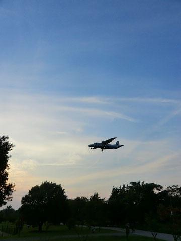 ▲武蔵野の森公園上空を調布飛行場に向かって着陸態勢に入った飛行機