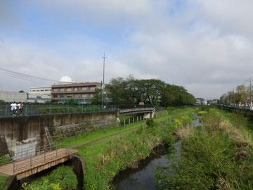 野川から建物を見た写真。左隅の人は、テニスコートを見下ろしている