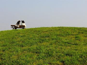 飛行場の見える丘のベンチ