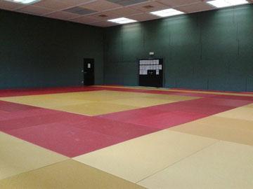 Judo Club Stockerau - neue Matten