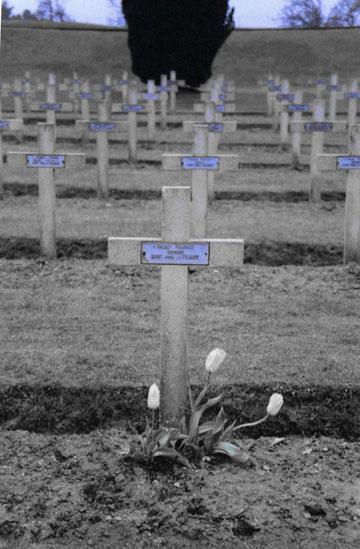 Verdun Friedhöfe