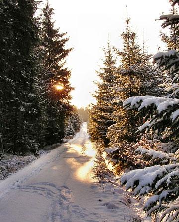 der Spessart ist auch im Winter reizvoll