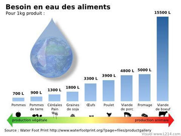 l'eau virtuelle