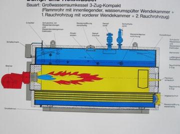 Disegno in sezione di generatore di vapore a camera di inversione bagnata laterale. (Loos)