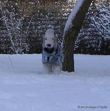 Olga 9 mois dans la neige.