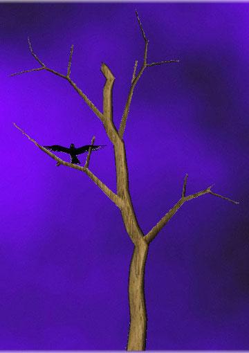 corbeau sur arbre