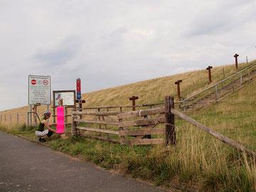 Inga Momsen verwebt neonpinkfarbene Seile (Foto: R. Helmholtz)