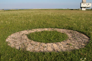 Das Gras ist sichtbar hoch gewachsen (Foto: R. Helmholtz)