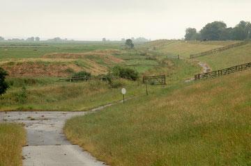 Viehwurten im Allwördener Außendeich - Foto R. Helmholtz