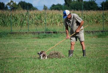 Ares aiuta Piero con l'erba