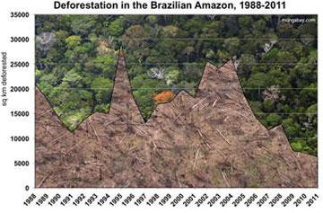 Mongabay.comより 1988年-2011年のアマゾンの森林破壊