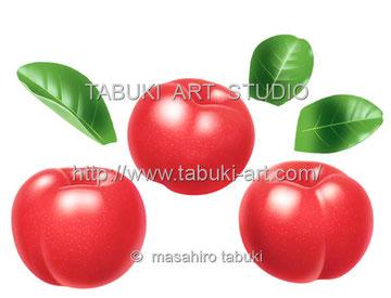 アセロラリアルイラスト 果物