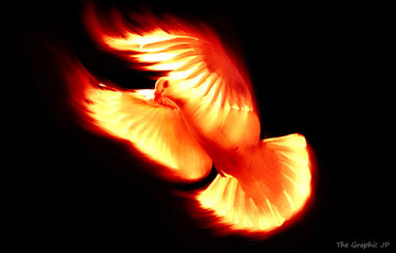 The holy spirit: a dove, fire, air, light