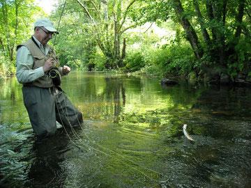 Pêche à la mouche sur la rivière du Steir