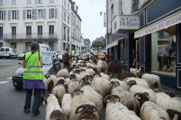 Il y a tout à Oloron, pas besoin d'autoroute pour aller à Paris, ni à Pau...