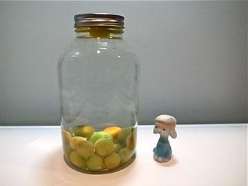 キズ物小梅は酵母に。写真は大好きな置物と名前は「にんにく」