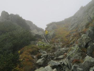 水晶岳登りにあるハシゴ