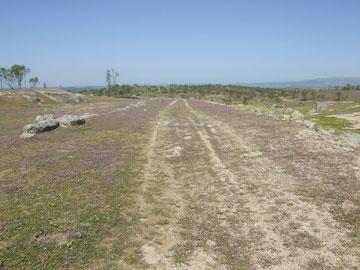 von den Römern angelegte Trasse