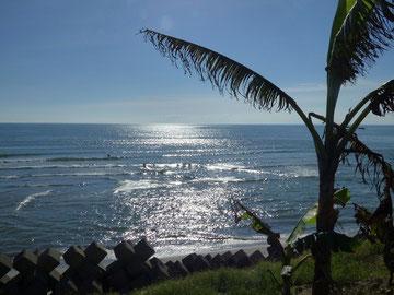 今日のEBISU SURF前
