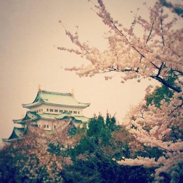 なーんて言いながら、写真は思いっきり日本ですがw 続きを読むをクリック!