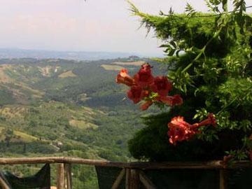 そしてもちろん、至る所から豊かな緑広がる「地上」風景を見下ろすことができます。