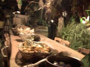 畑で採れた作物などが、庭の大テーブルに並んでいます。