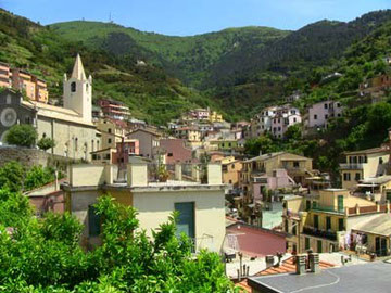 すぐ後ろは山。海へと向かう急斜面に作られた村です。