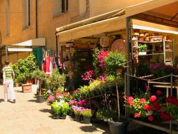 通りの花屋