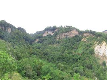 橋の下や周囲は、こんな緑の渓谷。