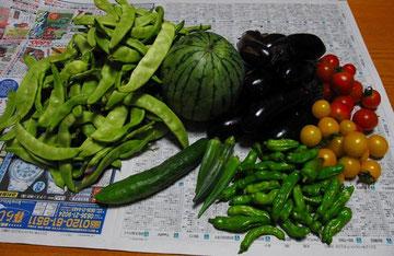 おかんの野菜