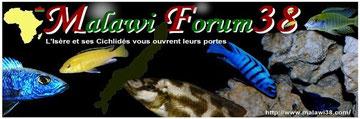 Malawi Forum 38