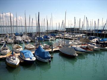 Blick von meinem Heimat Hafen aufs Badische Meer