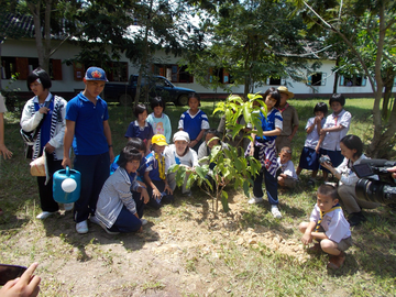 Planting trees with volunteers from Japan