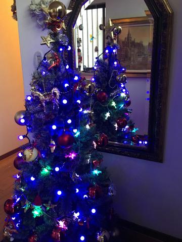 クリスマスツリーです(^^)