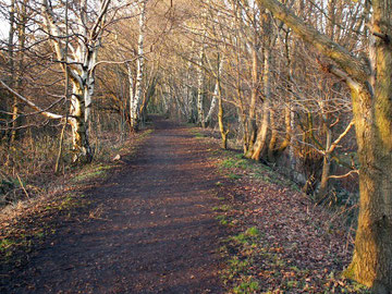 Harborne Walkway looking north along the embankment over Chad Valley. © Copyright Phil Champion reuse licensed under Creative Commons Licence: Attribution-Share Alike 2.0 Generic. Geograph OS reference SP0385.