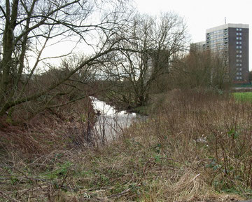 Stechford mill stood on the west bank of the river above Stechford Bridge.