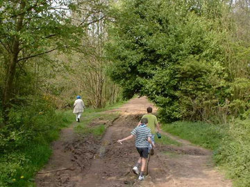 Woodgate Valley Country Park. Image from BirminghamUK website in accordance with their copyright restrictions.